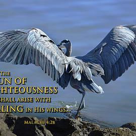 Healing Wings by Brian Tada