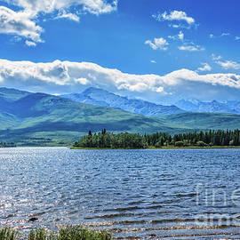 Healy Lake by Robert Bales