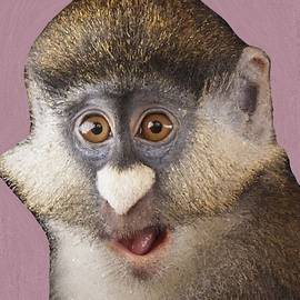 Heart-Nose Monkey by Chante Moody