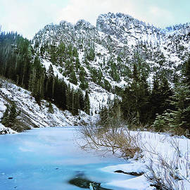 Heather Lake by Sylvia Cook