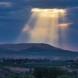 Heavenly light  by Lynn Hopwood