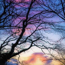 Heavenly Silhouette by Rob Hemphill