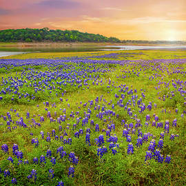 Heaven's Light at Muleshoe Bend by Lynn Bauer