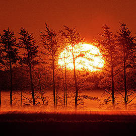 Hedgerow Sunrise 2 by Marty Saccone