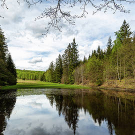 Helltalsteich, Harz by Andreas Levi