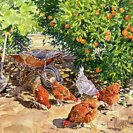 Hens in my Orange Grove by Margaret Merry