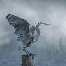 Heron in the Haze by Joy McAdams