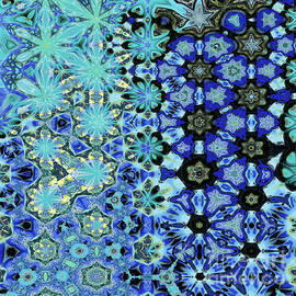 Hibernal Metamorphosis 18 by Richard Maier