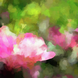 Hibiscus Garden Abstract by Francis Sullivan