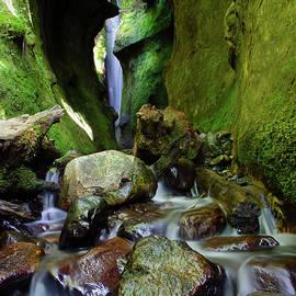 Hidden Falls Sombrio Beach 8 by Bob Christopher