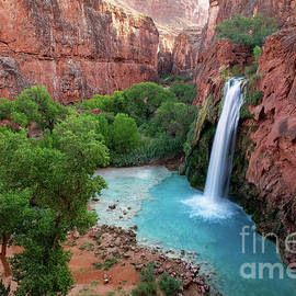 High-Angle View of Havasu Falls in Arizona's Grand Canyon by Tom Schwabel