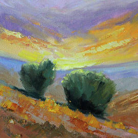 High Desert Sunset by Nancy Merkle