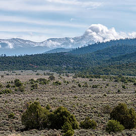 High Plains Meet Forest Mountains by Debra Martz