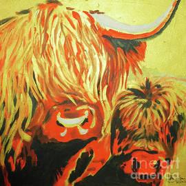Highland Cattle by Jolanta Shiloni
