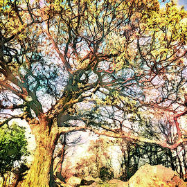 Hike the Hills fx by Dan Carmichael