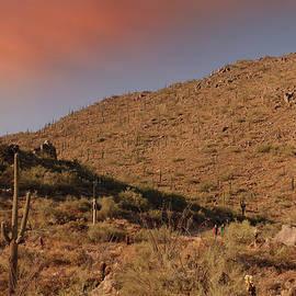 Hikers Among Saguaros by Lynda Lehmann