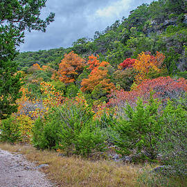 Hiking Through Fall at Lost Maples  by Lynn Bauer