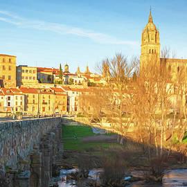 Historic Bridge and Cathedral Salamanca Spain by Joan Carroll