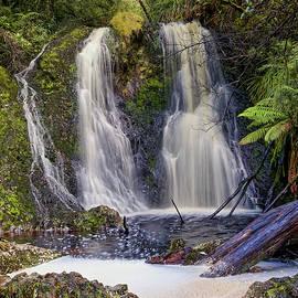 Hogarth Falls - Strahan - Tasmania by Tony Crehan