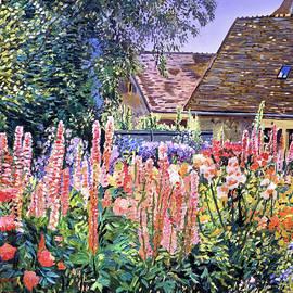 Hollyhocks Tangled Garden by David Lloyd Glover