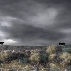 Home Before the Storm by Wayne King