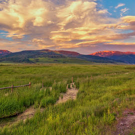 Home On The Range by Lorraine Baum