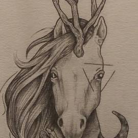 Hopeless Romantic aka Ashton's Unicorn by Zak