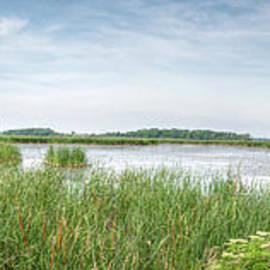 Horicon Marsh Panorama by Deborah Klubertanz