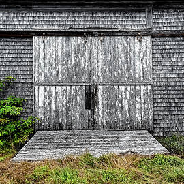 Horse Barn Door by Marty Saccone