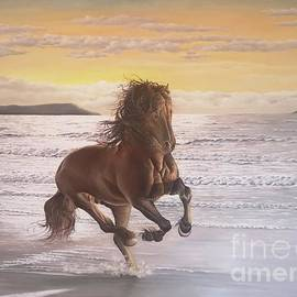 Horse on the beach by Biljana Reynolds