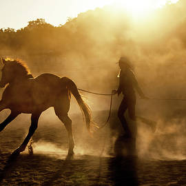 Horse Trainer by Jerry Cowart
