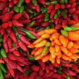 Hot Chilies Red, Green And Yellow by Ivete Basso Photography