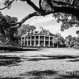 Houmas House Under the Oaks - BW by Scott Pellegrin