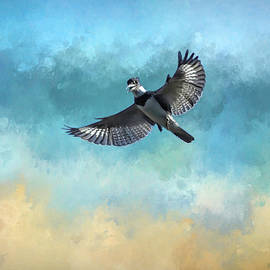 Hovering Kingfisher by Donna Kennedy