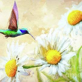Hovering Over The Daisies by Tina LeCour