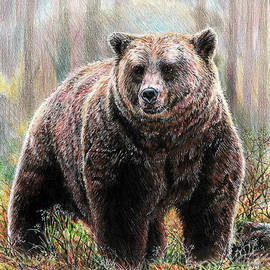 Huggy the Grizzly Bear by Andrew Read