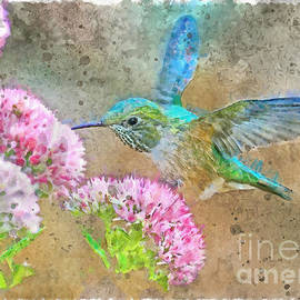 Hummer Delight, watercolor painterly by Banyan Ranch Studios