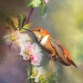Hummer on Pink Spring Flowers IV  by Linda Brody