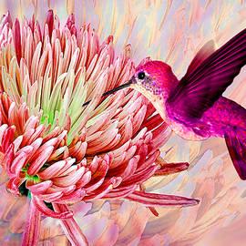 Hummingbird and Mum by Michele Avanti