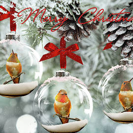 Hummingbird Christmas by Wes and Dotty Weber