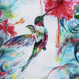 Hummingbird - feeding on hibiscus  by Harsh Malik