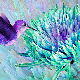 Hummingbird n Mum Cool Colors by Michele Avanti