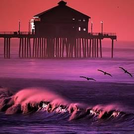 Huntington Beach Pier with Pelicans by John R Williams