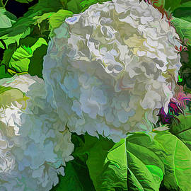 Hydrangeas With A Twist by Lorraine Baum