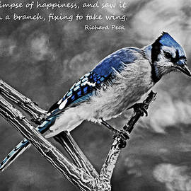 I Caught a Glimpse of Happiness B and W by Maria Keady