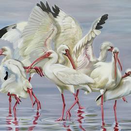 Ibis Flock by Phyllis Beiser