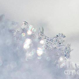 Ice  Crystals by Shirley Dutchkowski