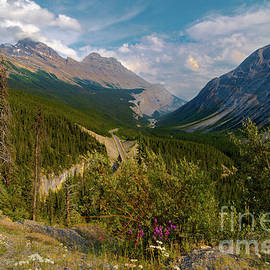 Icefield's Parkway Mountains by Norma Brandsberg