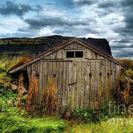 Old Iceland Farm Shed by Miles Whittingham