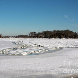 Icy Meadow by Ruth H Curtis